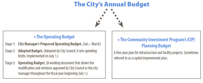 The Annual Budget Graphic